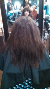 Before Pro fiber treatment by L'Oreal